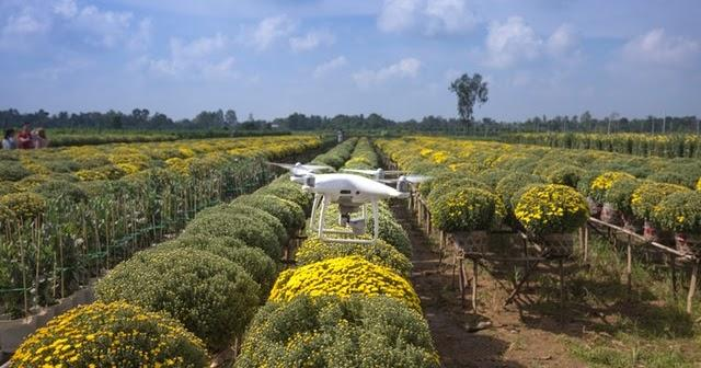 how iot helps farmers monitor their greenhouses and prevent diseases